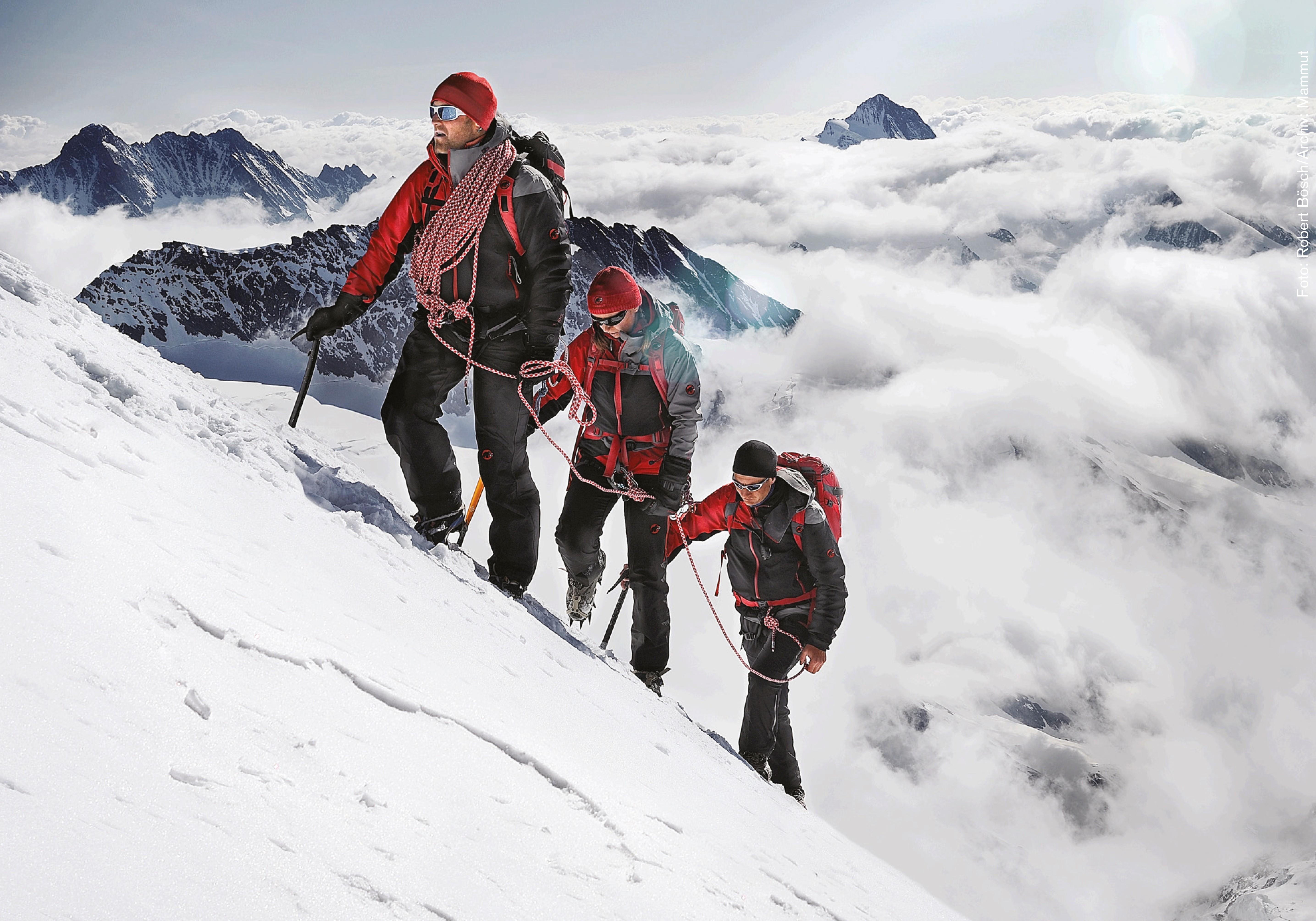 Klettersteigset Mammut : Edelrid jester comfort klettersteigset klettergurt eur
