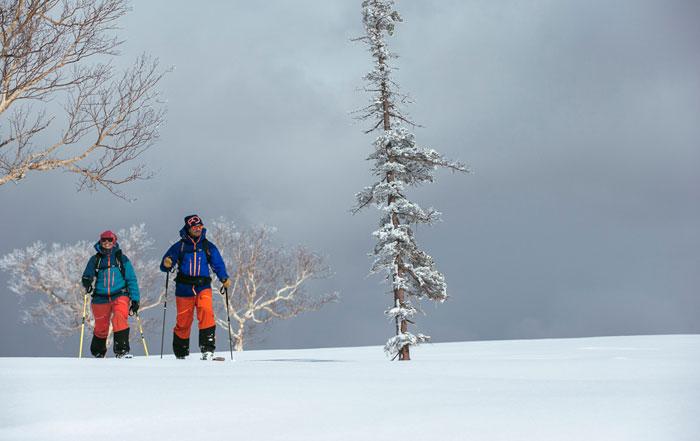 Skitourenausrüstung Ortovox