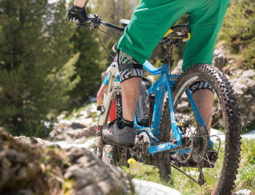 E-Bikes mit Bosch-Motor: die besten Pedelecs