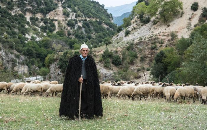 Balkan arm wirtschaft