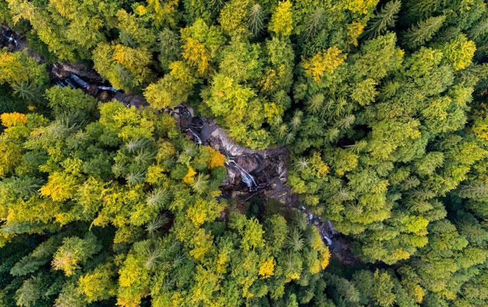 """""""Save the Blue Heart of Europe"""" – sind die letzten wilden Flusslandschaften des Balkans noch zu retten?"""